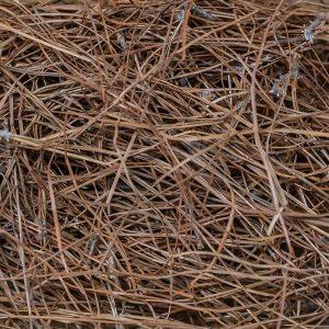 Georgia Pine Straw Bale